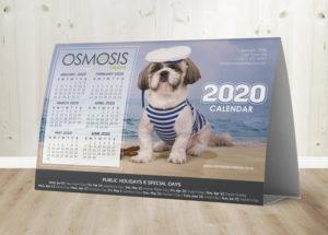 Osmosis Tent Calendar D