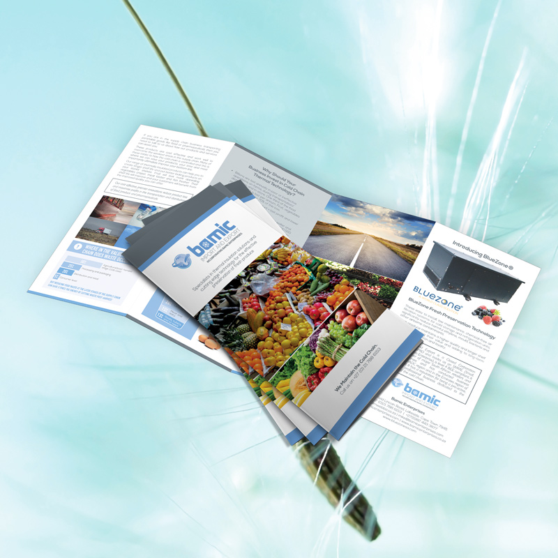 Bamic Tri-Fold Flyer